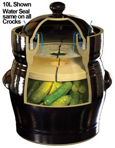 Pot, a 5 Liter Fermentation Pot Would be great for making pickles this summer.a 5 Liter Fermentation Pot Would be great for making pickles this summer. Fermenting Jars, Fermentation Crock, How To Make Pickles, Making Pickles, Pottery Designs, Pottery Ideas, Earthenware Clay, Stoneware Crocks, Ceramic Techniques