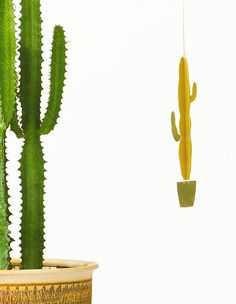 Loving these brass plant mobiles we found on Design Sponge