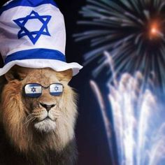 The Lion of Zion