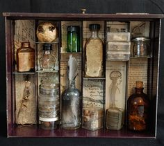 Apothecary, make a curio cabinet of sorts.  Like the dictionary paper background. Small though. Maybe have multiples with different themes mounted to the wall in columns.