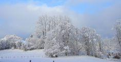 Winterlandschaft - Berghof Kinker #bauernhofurlaub #allgäu #wintertraum