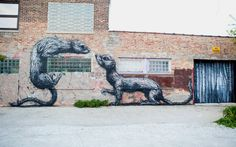 favorite Roa piece on the side of Kevin's building