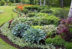 Hosta, lambs ear, lilies, coral bells shade garden