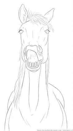 - Lineart by Niarbon on DeviantArt Pencil Drawings Of Animals, Horse Drawings, Realistic Drawings, Art Drawings, Cartoon Sketches, Animal Sketches, Art Sketches, Horse Sketch, Horse Coloring Pages