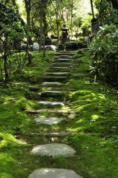 Japanese garden path leading to the tearoom, Kanazawa (Kanazawa-shi), Ishikawa Prefecture, Japan.
