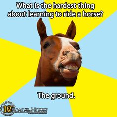 What is the hardest thing about learning to ride a horse? The ground!