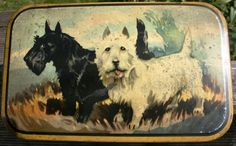 Delightful Burton's Biscuits Art Deco tin with by Tinternet Vintage Tins, Vintage Antiques, Altoids Tins, Vending Machines, Tea Caddy, Tin Toys, Advertising Signs, Westies, Scottie
