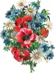 Oblaten Glanzbild scrap die cut chromo Sommer Blume 16cm corn flower poppy