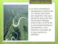 Justificación.<br />La selva amazónica desaparece al ritmo de un campo de fútbol por segundo. Hay que destacar que este ti...