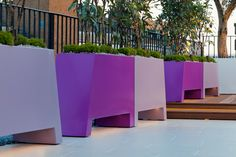 4 pairs of slanted recessed #troughs in two colours with Pseudopanax and yellow Thyme and Olive tree in white planter with LED lighting on a #roof #terrace in #SE1. Photograph by Helmut Reinelt.