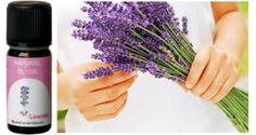 Cosmetics Oil of lavender