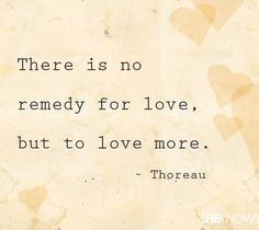 cute quotes about love