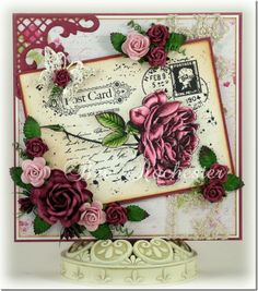 bev-rochester-joy!-old-letter-rose-2