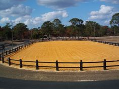 love the oval arena so I can have a track around it for my high energy horse