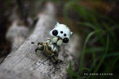 Polyphagocinus albus. / Garden white spidercrab. by dodoalbino