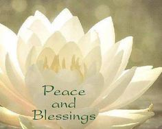 Mindfulness Centre: Join Peaceful Heart Lotus Zen Community ...