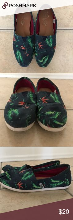 Toms tropical print Tropical print toms size 5.5 Toms Shoes Flats & Loafers
