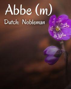 Dutch Names