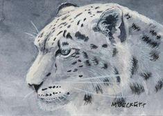 ACEO TW JAN Original Painting Snow Leopard animals wildlife endangered winter #Impressionism Painting Snow, Watercolor Paintings, Original Paintings, Leopard Animal, Snow Leopard, Country Fair, Artist Trading Cards, Atc, Impressionism