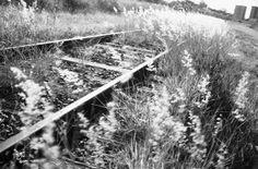 Estrada de Ferro em Marília\SP