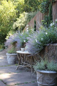 A patio with Rosemary and lavender spilling over stone walls... for aromatic breezes