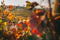 Ensaio Maria e Guilherme - Vinícola Marco Luigi - Vale dos Vinhedos RS - Renan Radici Wedding Photography