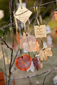 Leaves on Branches Seating Chart