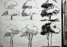 the trees in subtropical regions. Realistic Drawings, Easy Drawings, Pencil Drawings, Plant Sketches, Tree Sketches, Landscape Sketch, Landscape Drawings, Croquis Architecture, Architectural Trees
