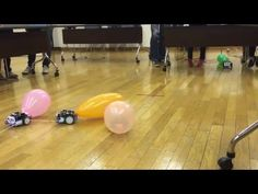 A short clip of our final activity at the Maker ToolSet mBot workshop. Battle Robots, After School, Computer Science, Arduino, Balloons, Workshop, Thankful, Coding, Classroom