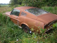 60's Ford Mustang fastback left in a field.