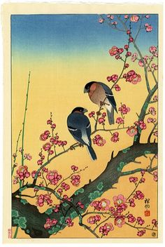 Plum Blossoms and Oriental Bullfinch by Ohara Koson, 1931 Japanese Artwork, Japanese Painting, Japanese Prints, Chinese Painting, Chinese Art, Illustrations, Illustration Art, China, Ohara Koson
