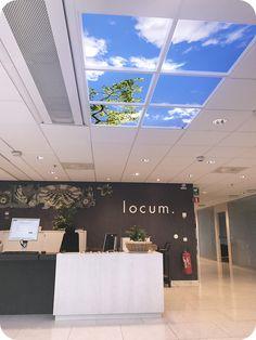 Wyposażenie holu firmy, poczeklania, recepcja ze świetlikiem LED Lumlyx, który emituje światło dzienne. Iluzja natury do pomieszczeń bez okien. Wirtualne okna ożywiają pomieszczenia.