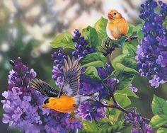 FREE BIRDS - flowers, painting, art, birds