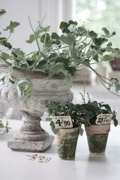 .vintage garden vignette Repinned by www.silver-and-grey.com