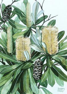 Australian Wildflowers, Australian Native Flowers, My Art Studio, Love Painting, Botanical Art, Art Inspo, Watercolor Art, Nativity, Shade Perennials