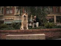 Hachi....forever faithful Hachi A Dogs Tale, Sad Dog Stories, Hachiko Statue, Japanese Akita, Japanese Dogs, A Dog's Tale, Cute Husky, Sad Movies, Akita Dog