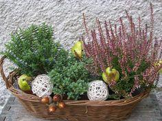 Flower Centerpieces, Flower Decorations, Flower Arrangements, Seasonal Decor, Fall Decor, Dry Fruit Box, Balcony Flowers, Outdoor Christmas Decorations, Garden Design