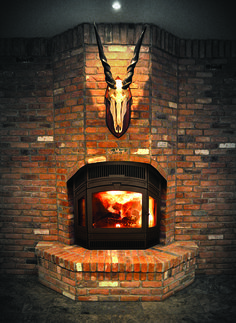 RSF Delta Fusion - technology exclusive to RSF Fireplaces, the Fusion has the first fully automatic fireplace air damper. It is EPA certified to burn as clean as grams per hour! Fireplace Ideas, Wood Burning, Fireplaces, Stove, Technology, House, Fireplace Set, Tech, Fire Places