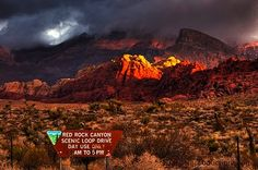 Red Rock Canyon -- It's beautiful.  BLM needs to be a little better at marking trails.