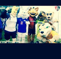 #carreraDeBotargas deportivas de equipos de fútbol #aguilasDelAmerica #cruzAzul #atlas #zorro #pumas #goyo #tigres #monarcas conviviendo en armonía