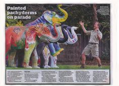Herd Of painted Mali elephants at Zoo prior to distribution through out Melbourne for two months