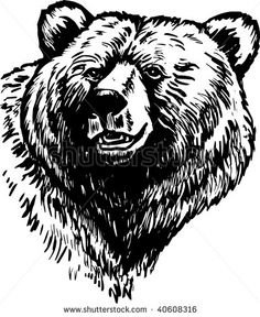 stock-photo-grizzly-brown-bear-40608316.jpg (385×470)