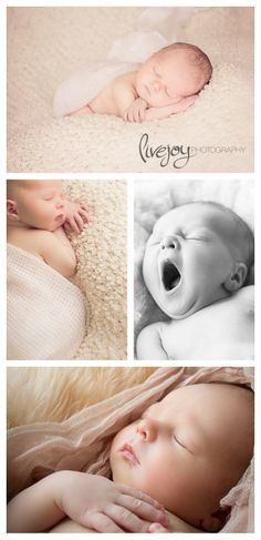 Newborn Photography #newborn #livejoyphotography