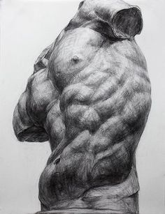 Disegni anatomia