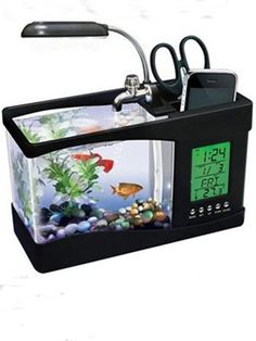recommends the USB Fishquarium, a $40 combination pen holder, clock, office light and yes, a real (though tiny) aquarium.