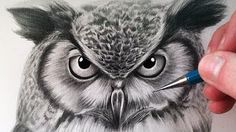 How to draw an owl - YouTube