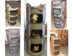 DIY Kratztonnen versteckt Katzentoilette, DIY Katzentoilette, coole Kratzbäume, Katzentoilette … - My CMS Hiding Cat Litter Box, Diy Litter Box, Cat Toilet Training, Dog Training, Cool Cat Trees, Cat Exercise, Cat Hacks, Animal Room, Cat Playground