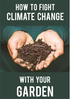 With the United Nations' recent report on climate change, the topic might feel overwhelming and a little dark. But the UN was clear on one important fact: there's still time. And while the bulk of the problem was created by a few large corporations, you can still make a difference. Soil health is one major solution to climate change, and that starts in your own yard. Outdoor Plants, Outdoor Gardens, Kitchen Witchery, House Plant Care, Important Facts, Grow Your Own Food, Urban Farming, Climate Change, Magick