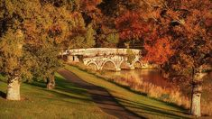 Stone Bridge On The Rye Water - Kildare, Ireland Print by Barry O Carroll Popular Photography, Nature Photography, Emerald Isle, World Of Color, Nature Photos, Rye, Ireland, Beautiful Places, Instagram Images