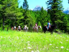 Horseback riding in the Columbia Valley Horseback Riding, Columbia, Outdoors, Mountains, Nature, Travel, Outdoor, Naturaleza, Viajes